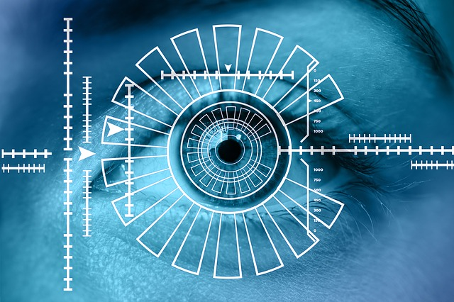 biometrics-in-identity-management
